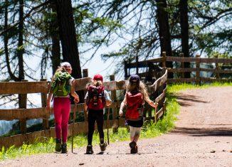 Trois enfants de dos qui font une randonnée à la montagne l'été